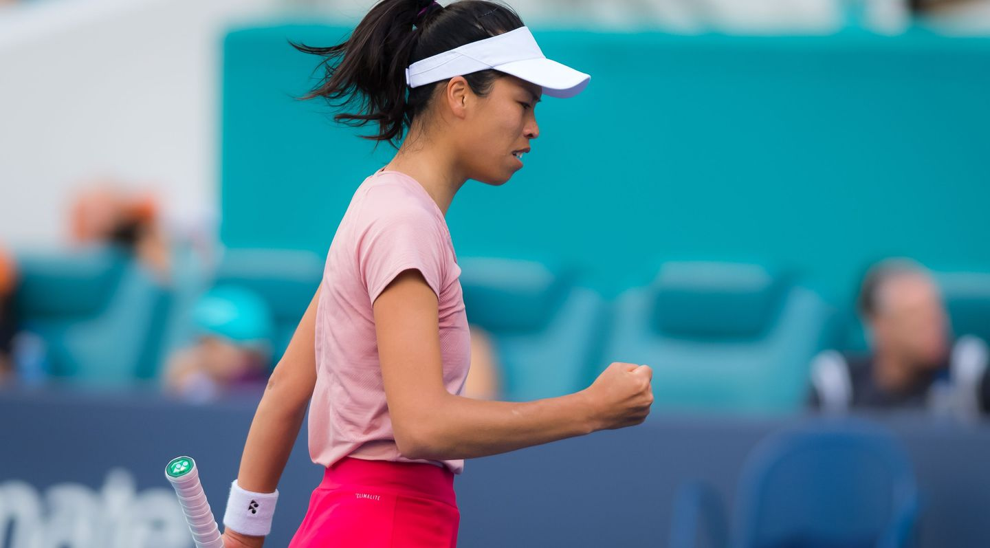 Image result for hsieh su-wei WTA